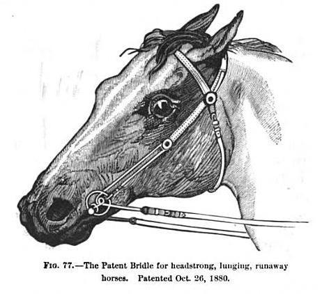 patentbridle